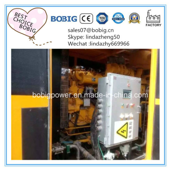 30kw to 500kw Natural Gas Biogas Sgenerator Set
